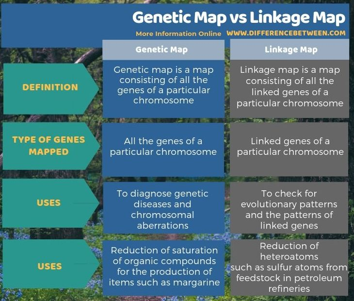 Difference Between Genetic Map and Linkage Map - Tabular Form