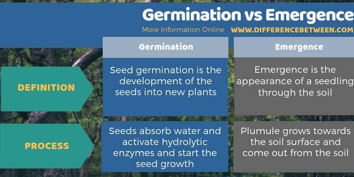 Difference Between Germination and Emergence - Tabular Form