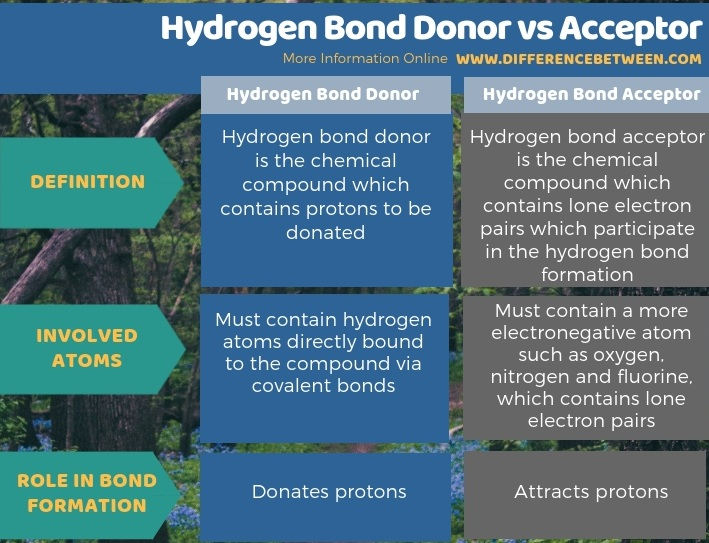 Difference Between Hydrogen Bond Donor and Acceptor - Tabular Form