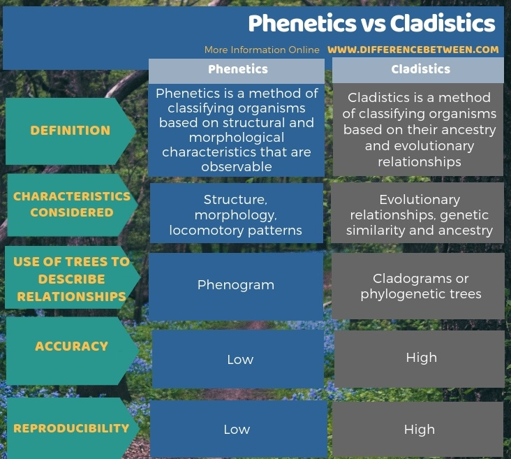 Difference Between Phenetics and Cladistics - Tabular Form
