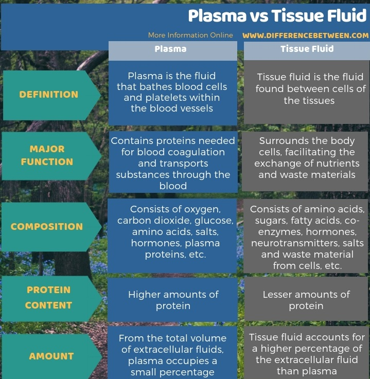 Difference Between Plasma and Tissue Fluid - Tabular Form