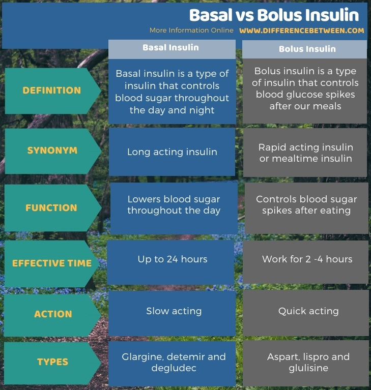 Difference Between Basal and Bolus Insulin in Tabular Form