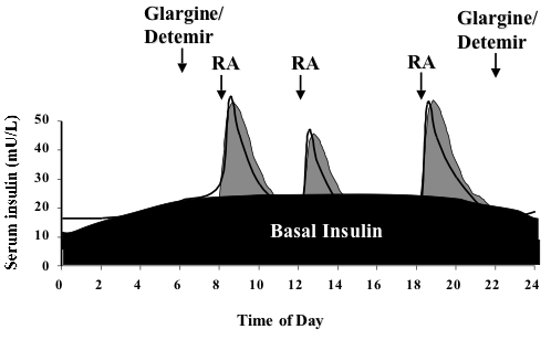Difference Between Basal and Bolus Insulin