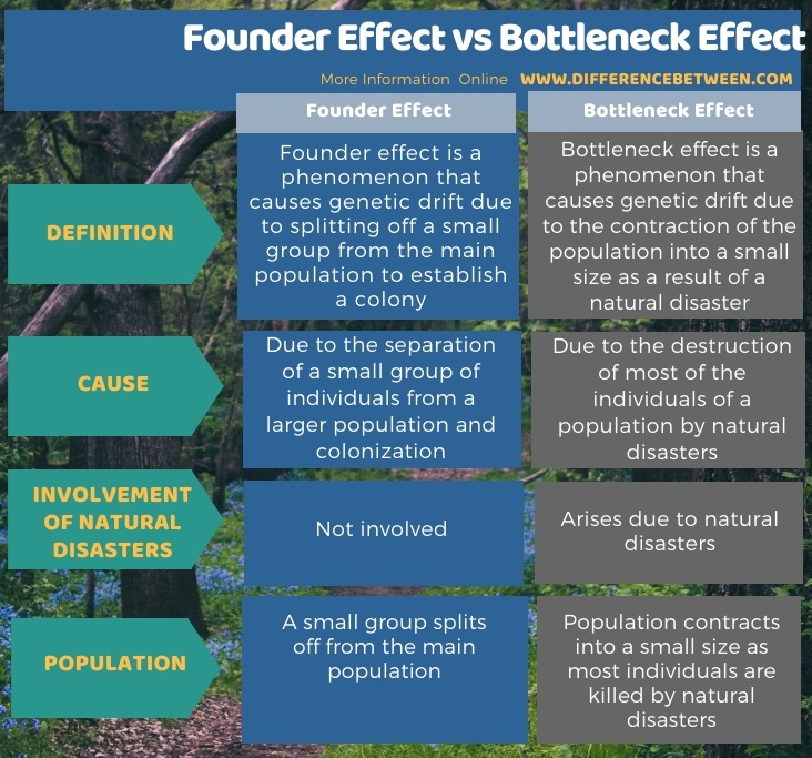 Difference Between Founder Effect and Bottleneck Effect in Tabular Form