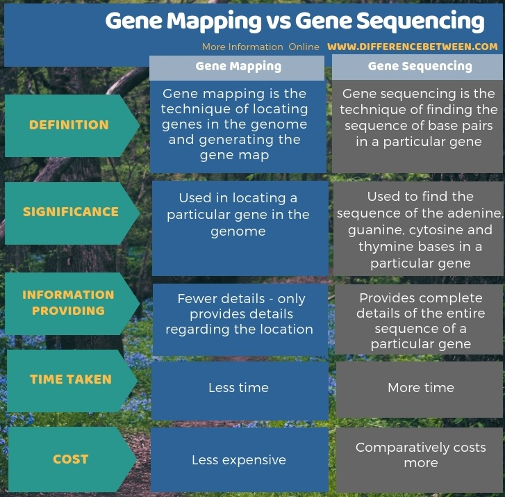 Difference Between Gene Mapping and Gene Sequencing in Tabular Form