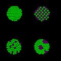 Difference Between Homogeneous and Heterogeneous Equilibrium