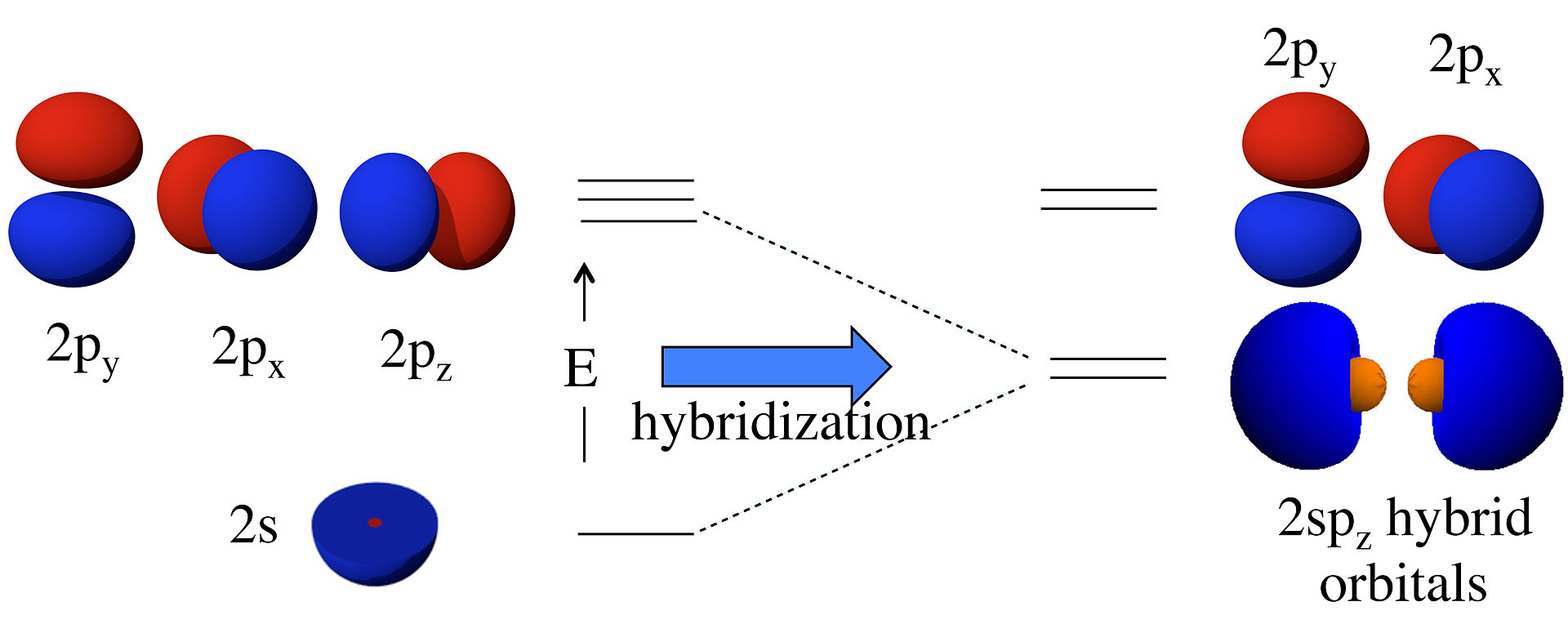 Difference Between Hybridization and Overlapping