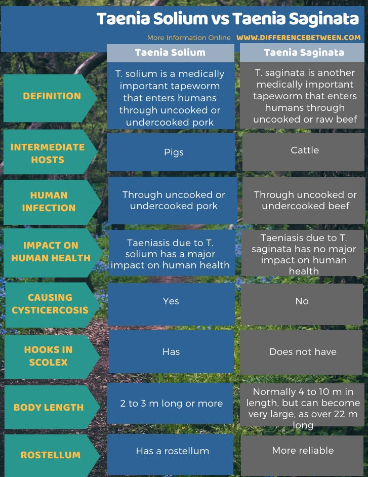 Difference Between Taenia Solium and Taenia Saginata in Tabular Form