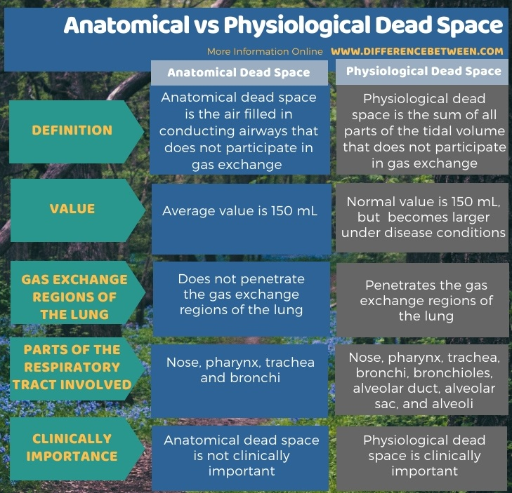 Difference Between Anatomical and Physiological Dead Space in Tabular Form