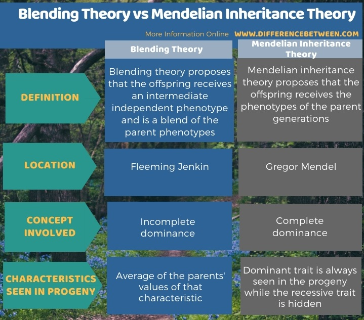 Difference Between Blending Theory and Mendelian Inheritance Theory in Tabular Form