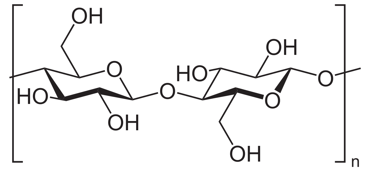 Difference Between Cellobiose and Cellulose