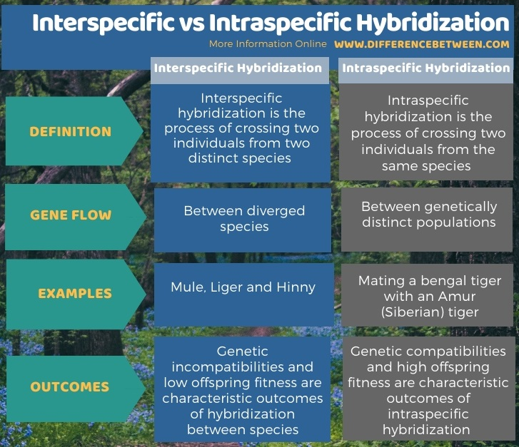 Difference Between Interspecific and Intraspecific Hybridization in Tabular Form