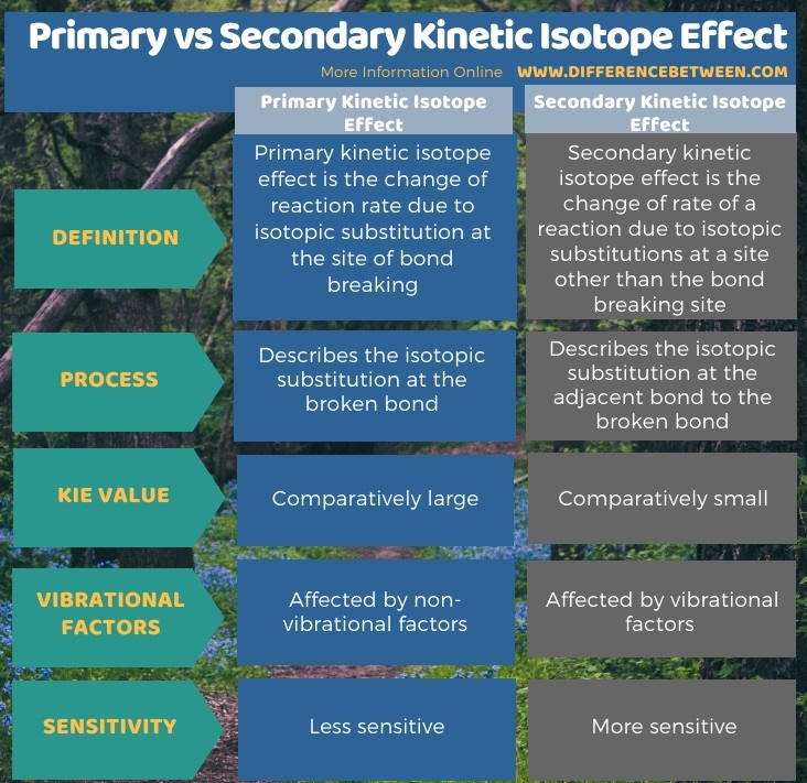 Difference Between Primary and Secondary Kinetic Isotope Effect in Tabular Form