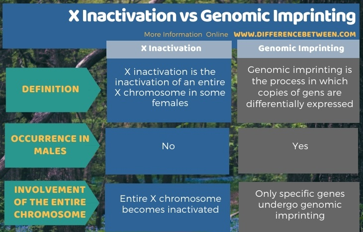 Difference Between X Inactivation and Genomic Imprinting in Tabular Form