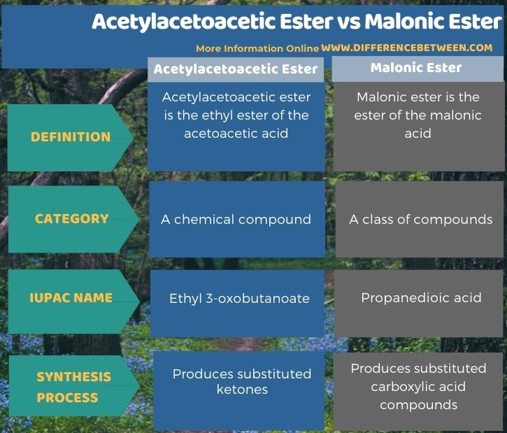 Difference Between Acetylacetoacetic Ester and Malonic Ester in Tabular Form