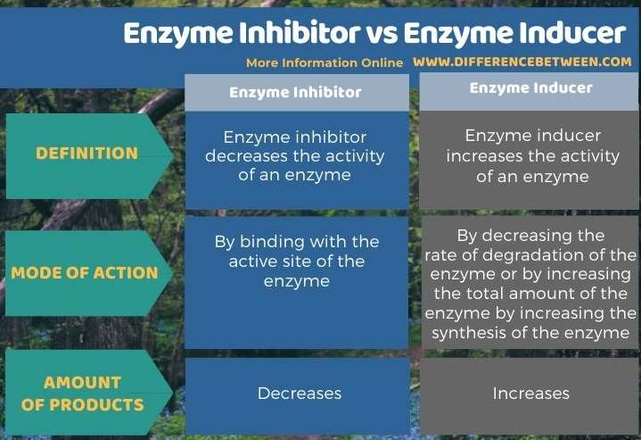 Difference Between Enzyme Inhibitor and Enzyme Inducer in Tabular Form