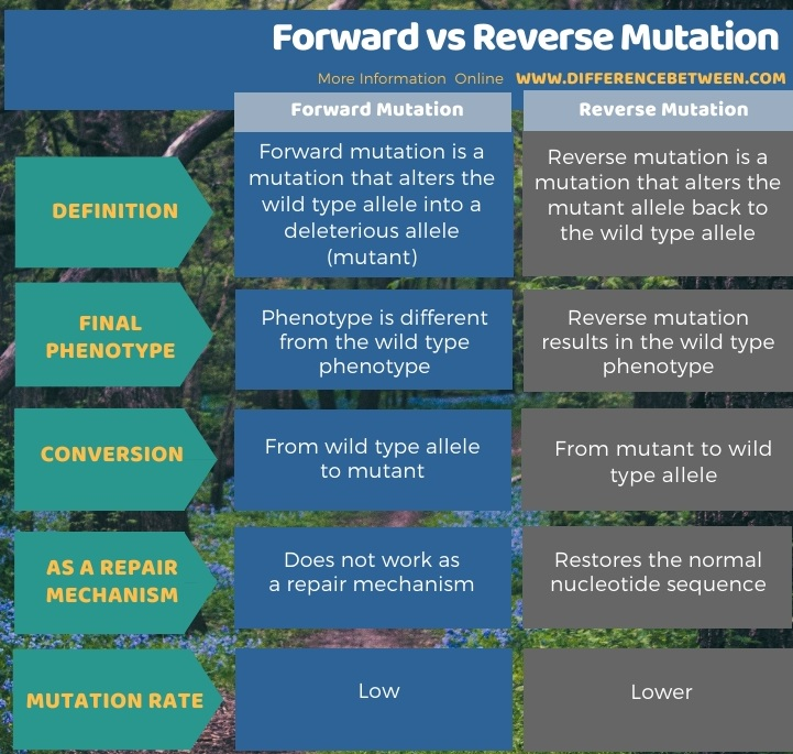 Difference Between Forward and Reverse Mutation in Tabular Form
