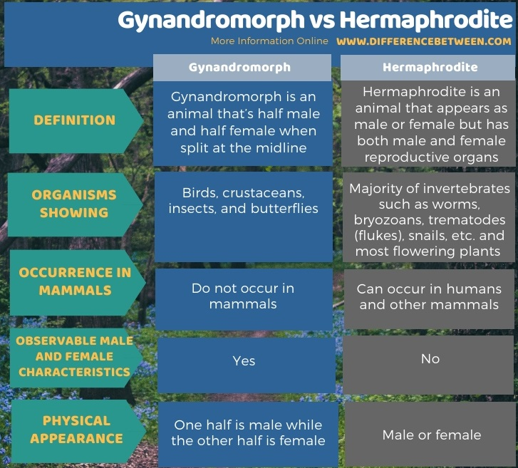 Difference Between Gynandromorph and Hermaphrodite in Tabular Form