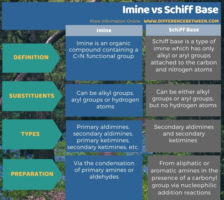 Difference Between Imine and Schiff Base in Tabular Form