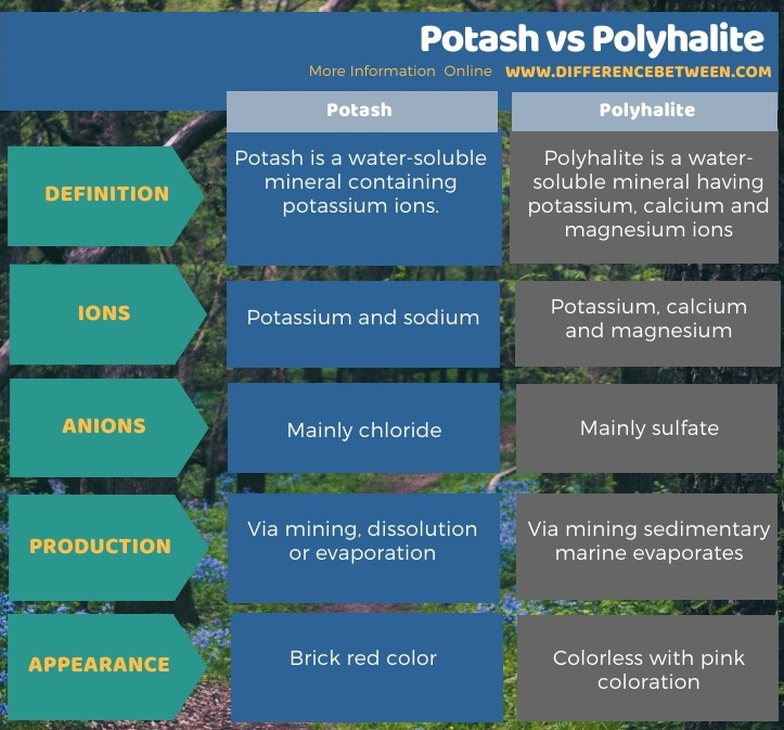 Difference Between Potash and Polyhalite in Tabular Form