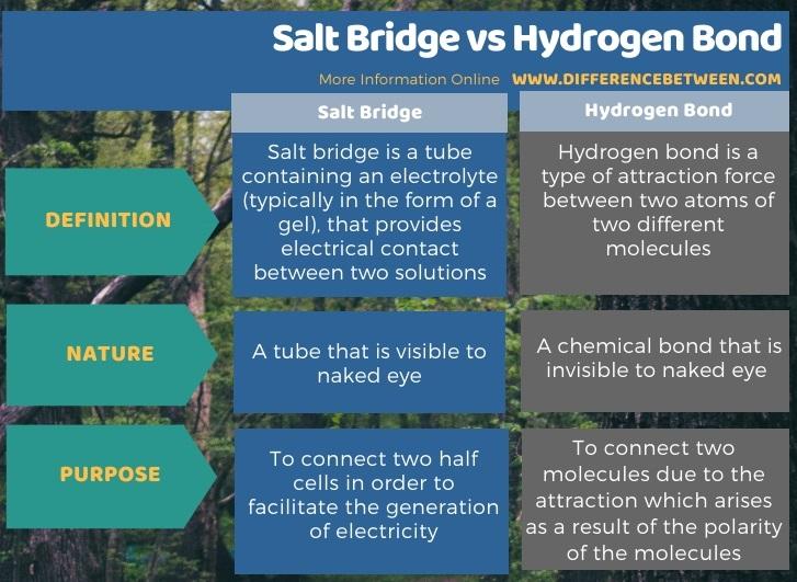 Difference Between Salt Bridge and Hydrogen Bond in Tabular Form