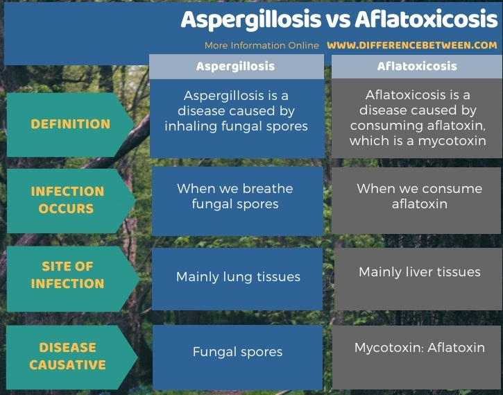 Difference Between Aspergillosis and Aflatoxicosis - Tabular Form
