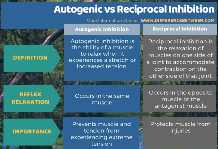Difference Between Autogenic and Reciprocal Inhibition in Tabular Form
