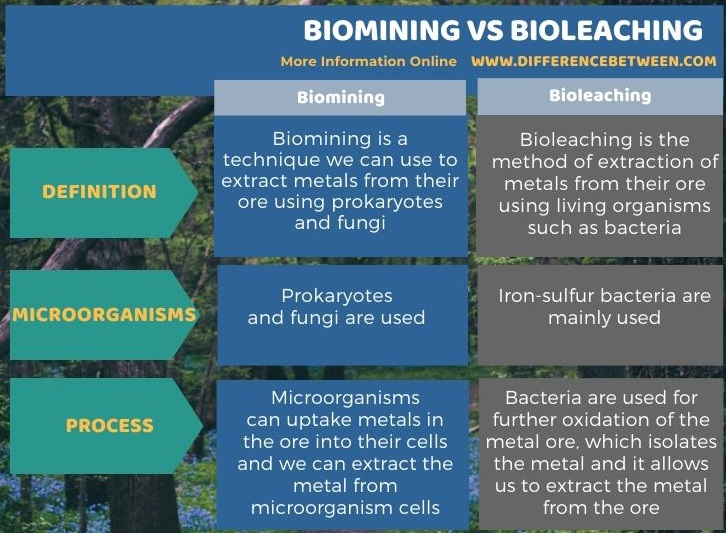 Difference Between Biomining and Bioleaching in Tabular Form
