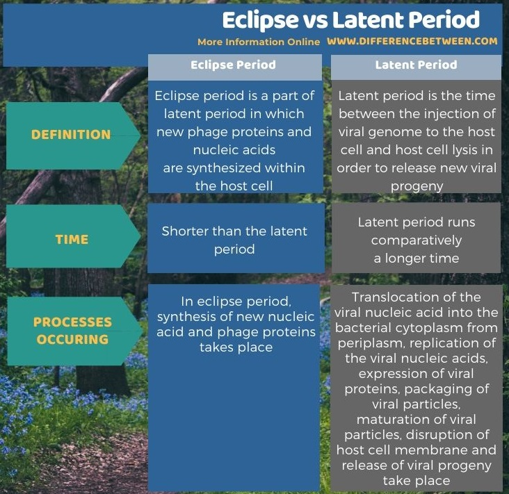 Main Difference - Eclipse vs Latent Period in Tabular Form