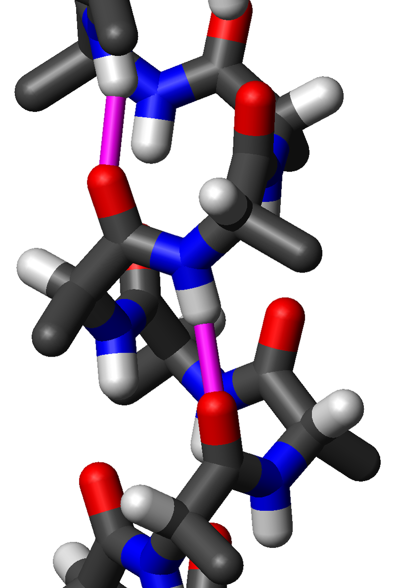 Difference Between Oligopeptide and Polypeptide