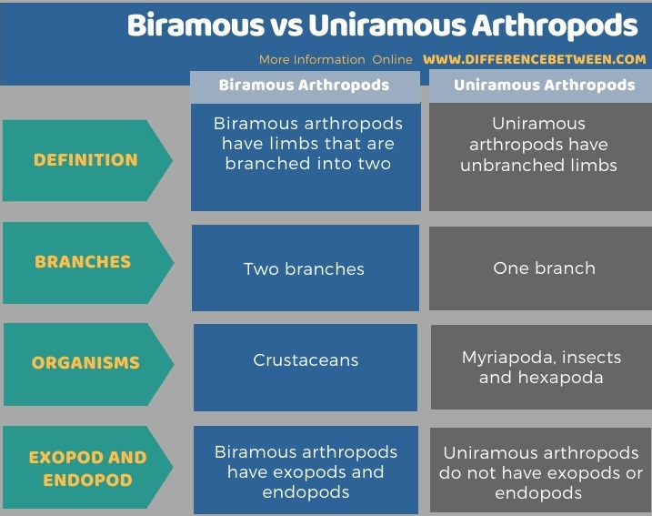 Difference Between Biramous and Uniramous Arthropods in Tabular Form