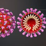 Difference Between Coronavirus and Influenza