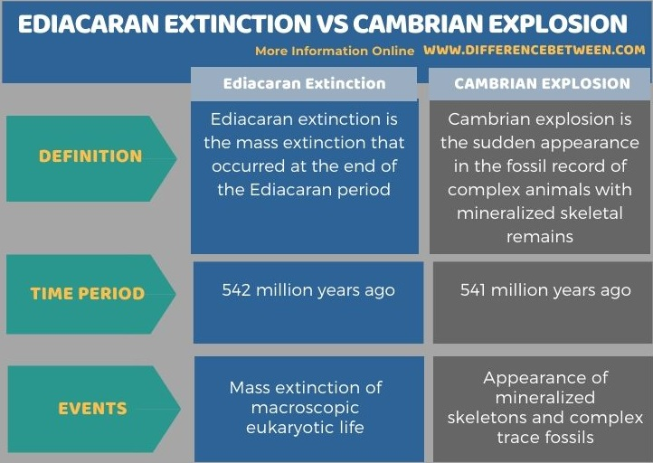 Difference Between Ediacaran Extinction and Cambrian Explosion in Tabular Form