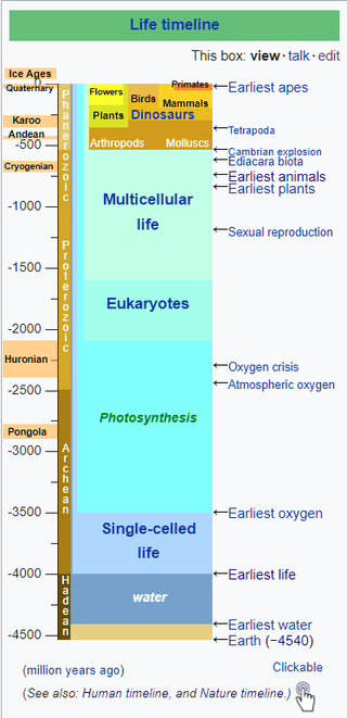 Key Difference - Ediacaran Extinction vs Cambrian Explosion
