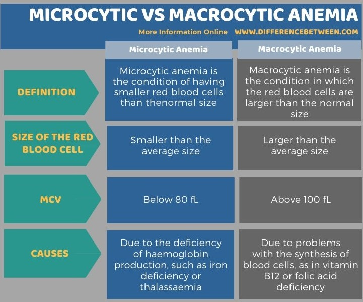 Difference Between Microcytic and Macrocytic Anemia in Tabular Form