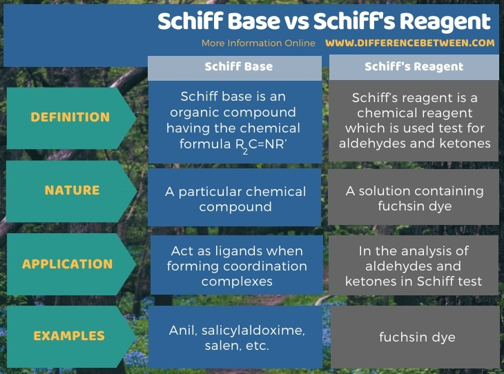 Difference Between Schiff Base and Schiff's Reagent in Tabular Form
