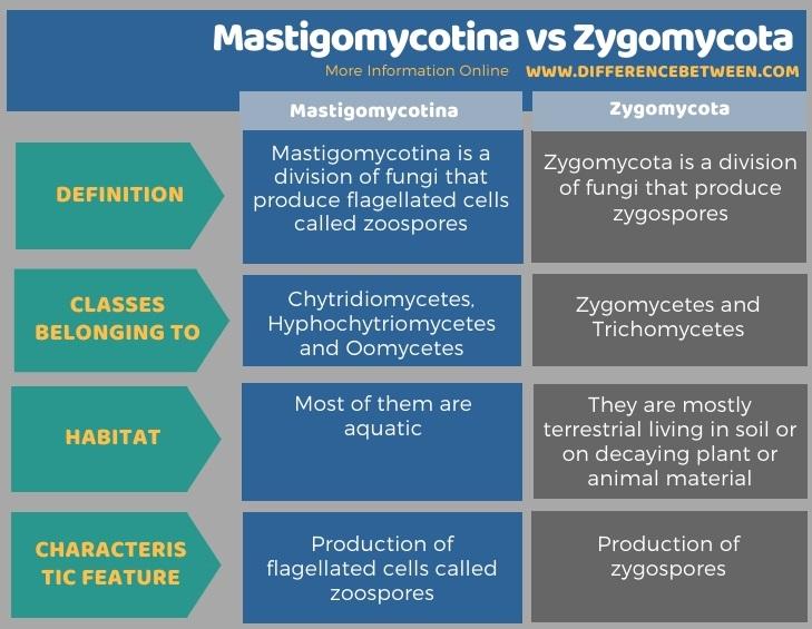 Difference Between Mastigomycotina and Zygomycota in Tabular Form