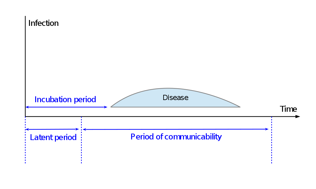 Difference Between Window Period and Incubation Period