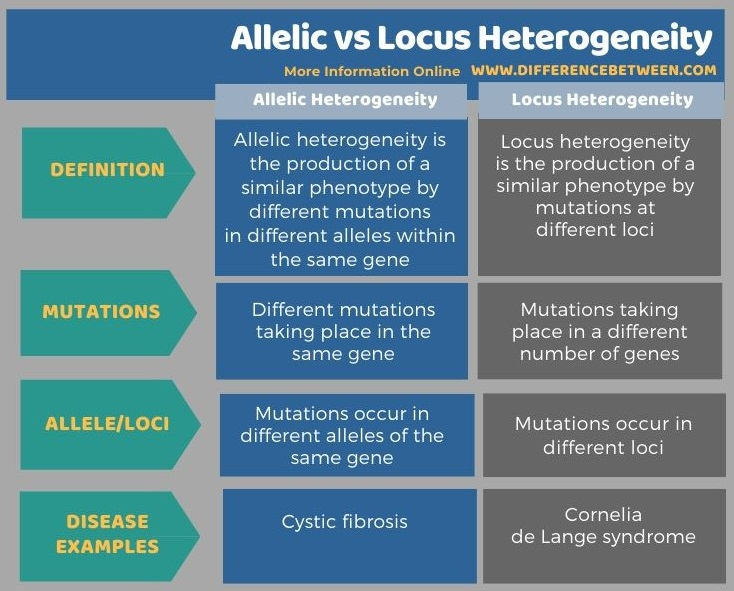 Difference Between Allelic and Locus Heterogeneity in Tabular Form