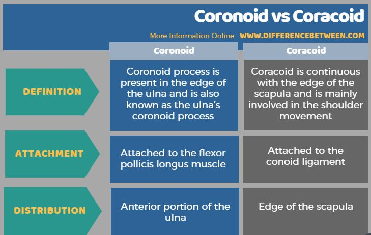 Difference Between Coronoid and Coracoid in Tabular Form