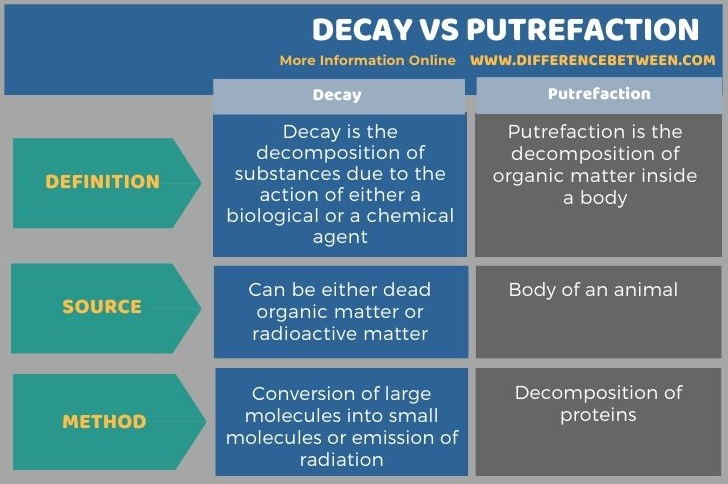 Difference Between Decay and Putrefaction in Tabular Form