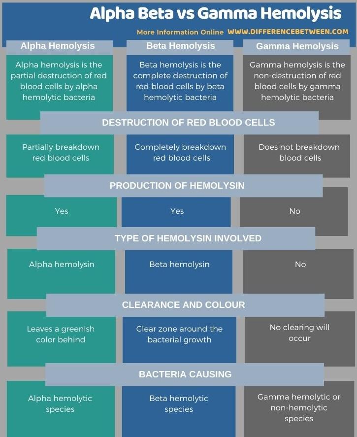 Difference Between Alpha Beta and Gamma Hemolysis in Tabular Form