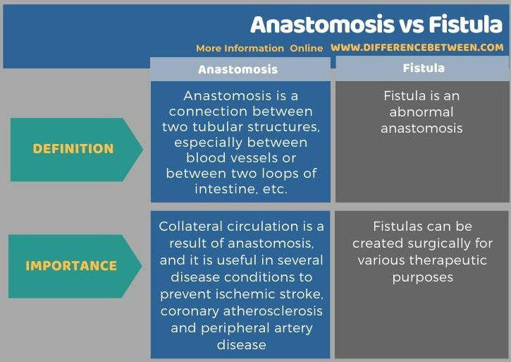 Difference Between Anastomosis and Fistula in Tabular Form