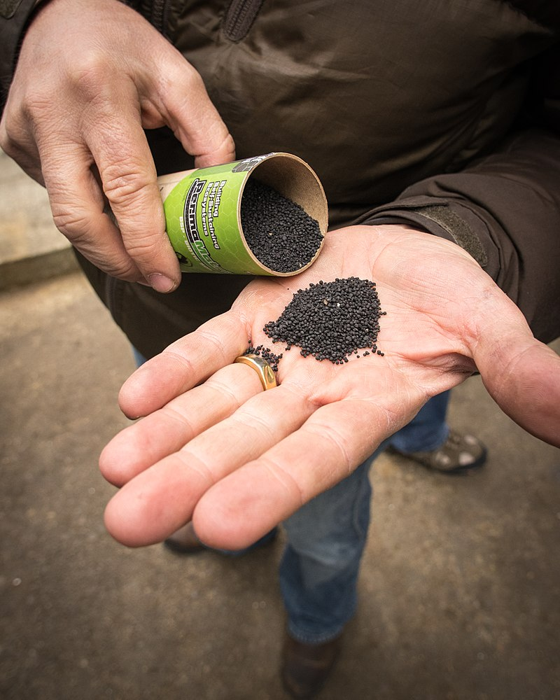 Key Difference - Biochar vs Charcoal