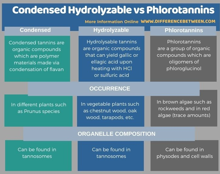 Difference Between Condensed Hydrolyzable and Phlorotannins in Tabular Form