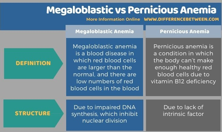 Difference Between Megaloblastic and Pernicious Anemia in Tabular Form