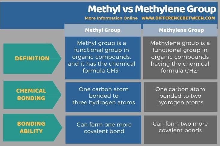 Difference Between Methyl and Methylene Group in Tabular Form