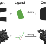 Difference Between Molecular Docking and Scoring