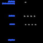 Difference Between Retinoid and Retinol