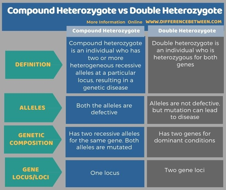 Difference Between Compound Heterozygote and Double Heterozygote in Tabular Form